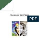 Psicologia Industrial