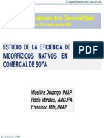 Soja Micorriza 1