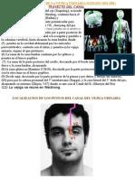 Fisiopatologia Del Canal de Vejiga