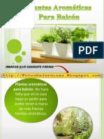 Plantas Aromaticas Para Balcon