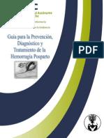 1ra Revision de La Guia EVE MODIFICADO