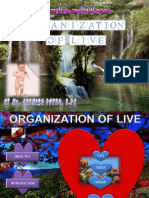 Organization of Live