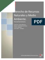 2do Parcial Domiciliario - Derecho Minero