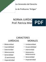 NORMA J Imprimir2 (1)