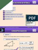 Correcao FP WEG