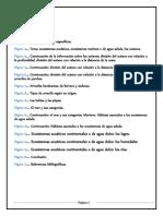 Ecosistemas Acuaticos Scribd