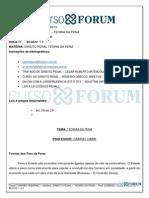 Turmãƒo Federal 2013 - Manhム- Presencial - Direito Penal - Teoria Da Pena - Aula 01 -06.05.2013