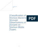 Classification of Various Bacteria through Observations of Growth on Various Media Types