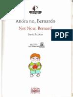 Ahora No Bernardo2