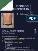 Presentasi FISIOLOGI-PENCERNAAN2013