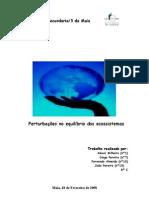 8C_Alexis Milheiro, Diogo Pereira, Fernando Almeida e João Pereira