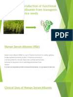 Large –Scale Production of Functional Human Serum Albumin from transgenic rice seeds