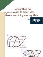 Anatomía Ecográfica de Híg-Vesi-Vias