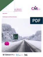Weatherin the Storm CMI UK En