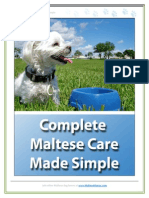 Complete Maltese Care Made Simple - SAMPLE