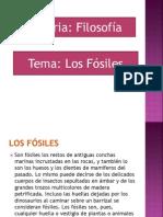 Presentación1 yerina fosiles