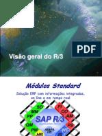 Visao Geral SAP