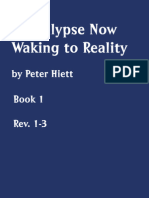 Revelation Book I by Peter Hiett