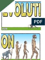 Display Banner- Evolution
