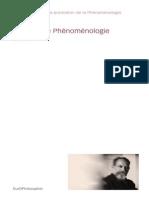 18741769 Annales Phenomenologie Richir 2003
