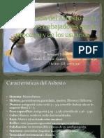 Asbesto Final CCMM