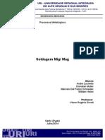 Processos MIG-MAG Zuchetto Müller Schneider Hister