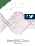 perfiles y funciones_agosto3_B.pdf
