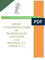 Curriculum Gipab 2014