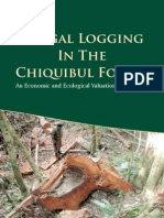 Illegal Logging in the Chiquibul Forest (2012)
