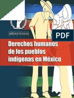 14 Cartilla DH Pueblos Indígenas