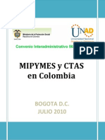 Mipymes Ctas Doc Final 2010