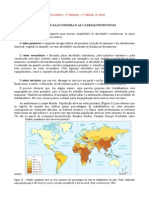 UE4 - EF - 5º série - Os Setores da Economia e as Cadeias Produtivas (NR)