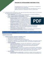 Resumen Placenta y Nutrición Fetal