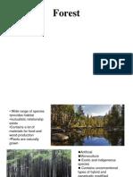 Forest and Plantation Presentation