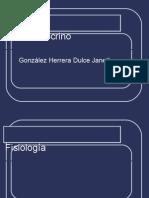 perfil endocrino 23