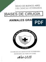 Animales Grandes - Laparatomías..