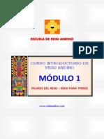 Curso Reiki Andino Modulo 1 Junio 2014