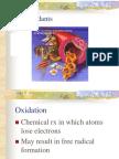 Antioxidant Function