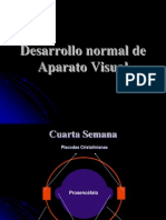 sentidos-111107181736-phpapp01
