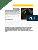 Folclore mapuche.docx