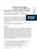 Cultivated wetlands and emerging complexity in south-central Chile and long distance effects of climate change