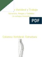 Columna Vertebral y Trabajo