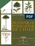 Botánica Indigena de Chile
