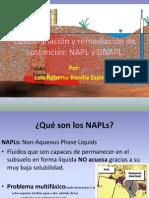 Contaminación y remediación de sustancias.pptx