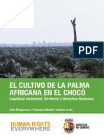 Palma Africana Choco