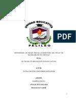 Veterinaria Dos Monografia Del Instituto