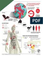 Infografía sobre el virus ébola