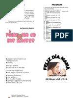 Programa Mama 2014