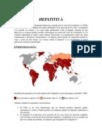 HEPATITIS A,B,C,D,E,F y G.docx