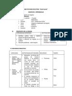 SESIONES-DE-perimetros y areas.docx